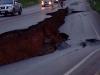 earthquake-damage3