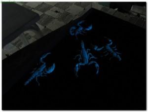 scorpions36